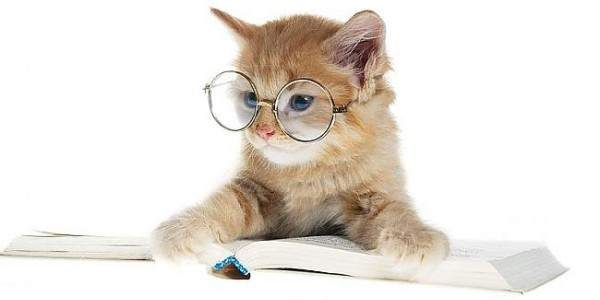 libri per chi ama gli animali