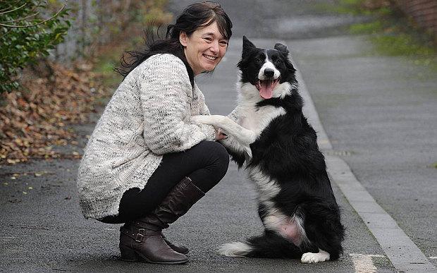 Tumour Dog 3152317b