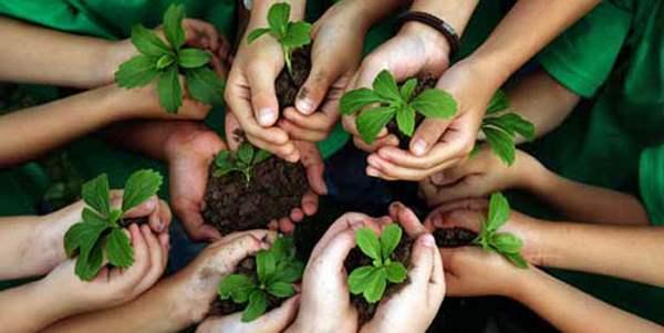educazione ambientale materia scolastica