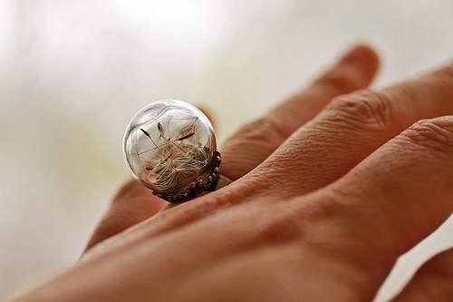 gioielli natura 1