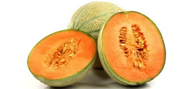 semi melone antichi