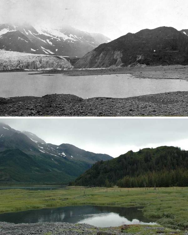 6. Pendersen 1909-20051