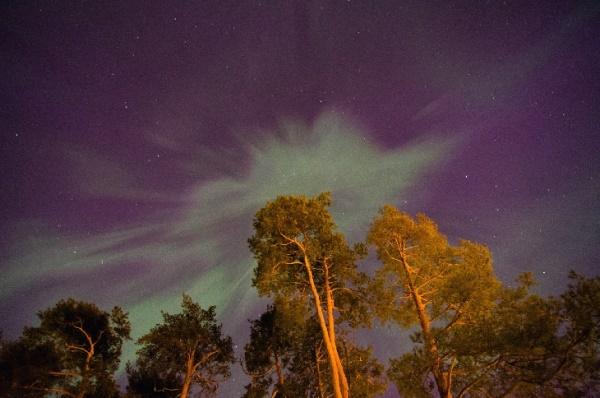 Finlandia1
