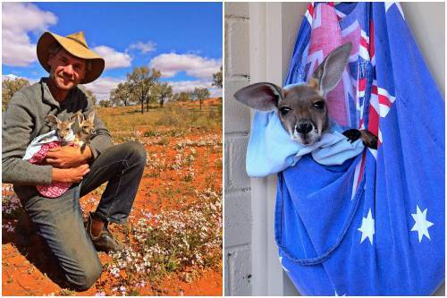 b2ap3_thumbnail_Chris-Barnes-Kangaroo-Sanctuary-canguri-orfani-Australia-0000.jpg