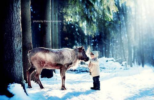b2ap3_thumbnail_Elena-Karneeva-meravigliose-foto-rapporto-animali-bambini-07.jpg