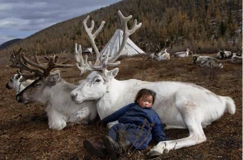 b2ap3_thumbnail_Hamid-Sardar-Afkhami-mongolia-foto-Dukha-popolo-renne-00.jpg