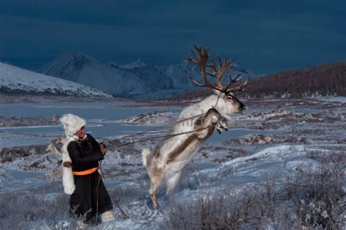 b2ap3_thumbnail_Hamid-Sardar-Afkhami-mongolia-foto-Dukha-popolo-renne-05.jpg