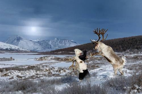b2ap3_thumbnail_Hamid-Sardar-Afkhami-mongolia-foto-Dukha-popolo-renne-10.jpg