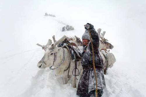 b2ap3_thumbnail_Hamid-Sardar-Afkhami-mongolia-foto-Dukha-popolo-renne-11.jpg