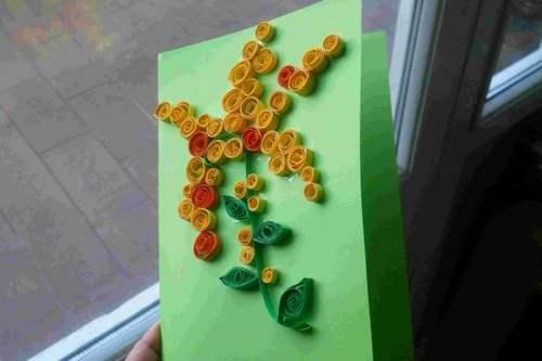 mimosa fai da te 10 carta