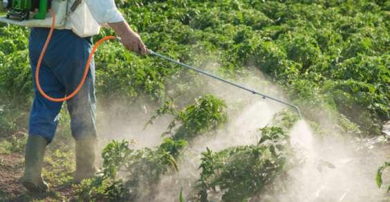 pesticidi cancerogeni