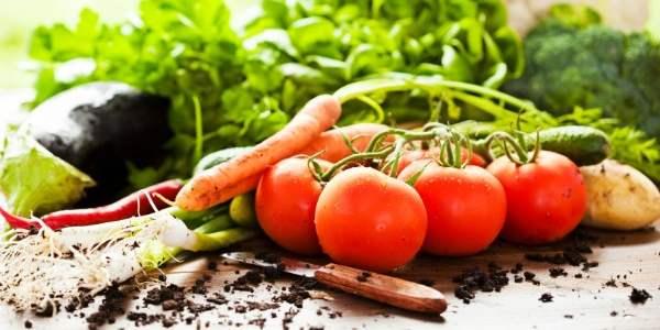 pesticidi cibo efsa