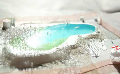 piscina piante 6