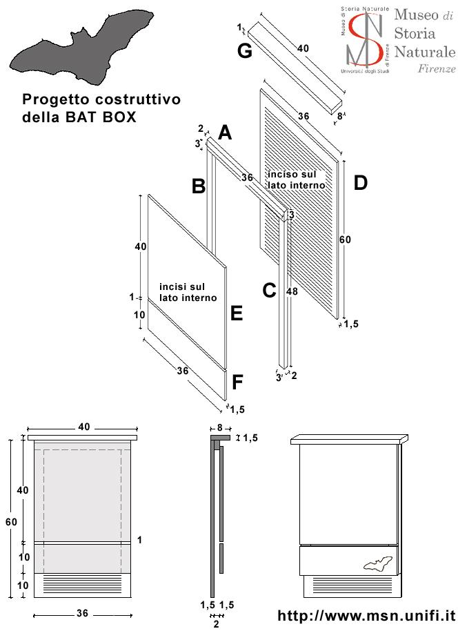 schema bat box firenze
