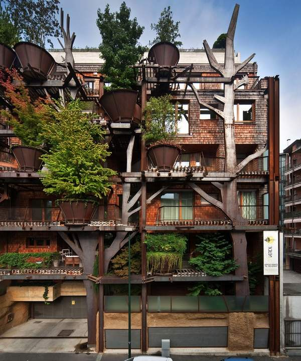 urban treehouse 2