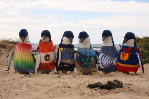 9. PinguiniM