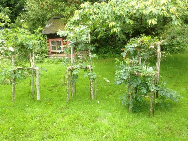alberi mobili 2