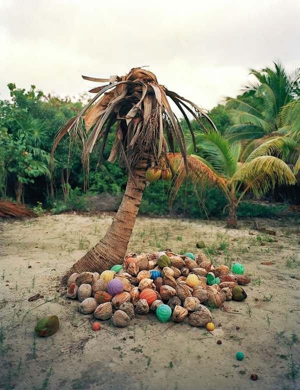arte rifiuti messico 3