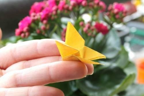 b2ap3_thumbnail_farfalla-origami-.jpg