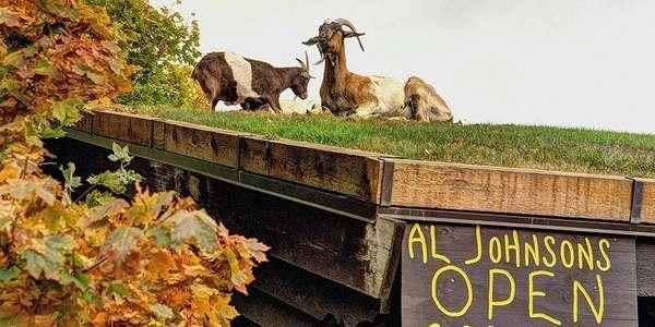 ristorante capre cover