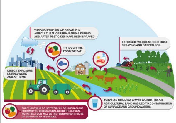 greenpeace pesticidi tossici agri