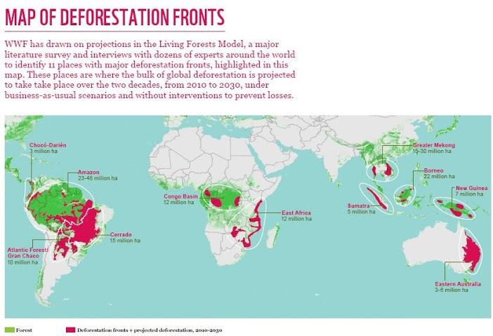 mappadeforestazione