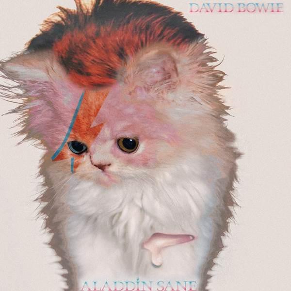 David Bowie Aladdin Sane