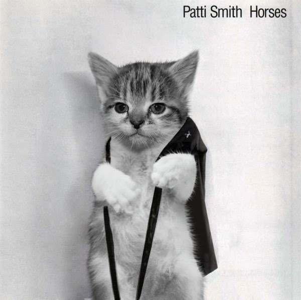 Patti Smith Horses Cat Parody