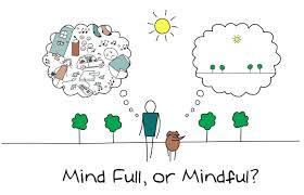 b2ap3_thumbnail_greenme-mind-full-o-mindful.jpg