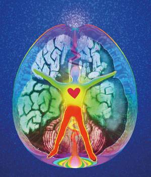 b2ap3_thumbnail_greenme-psicosomatica-cervello.jpg