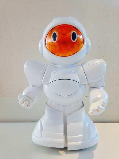 biro robot 1
