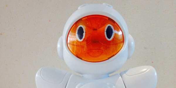 biro robot cover
