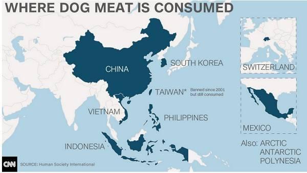 dove si consuma la carne di cane