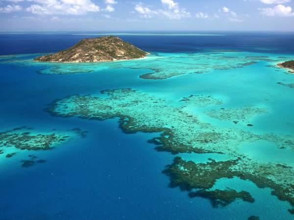 3. Barriera corallina