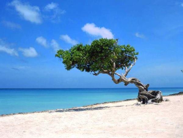 4. Bonaire