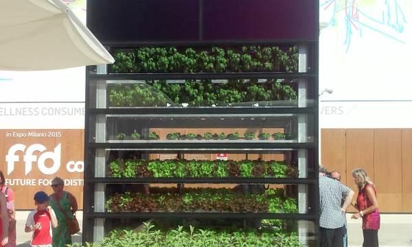 Enea vertical farm