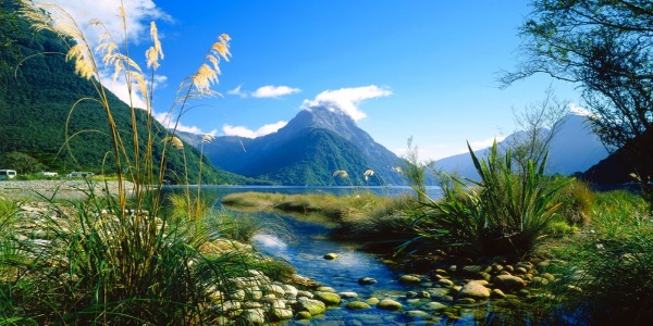 Fiordland National Park Climax Of New Zealands Natural Heritage 5