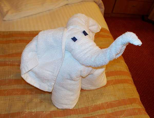 animaletti asciugamani 1