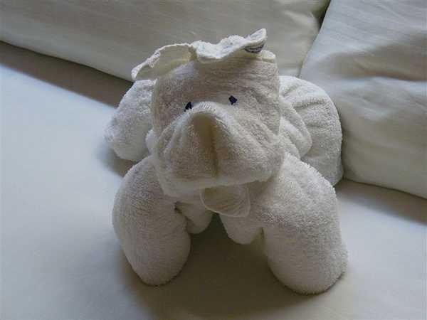 animaletti asciugamani 3