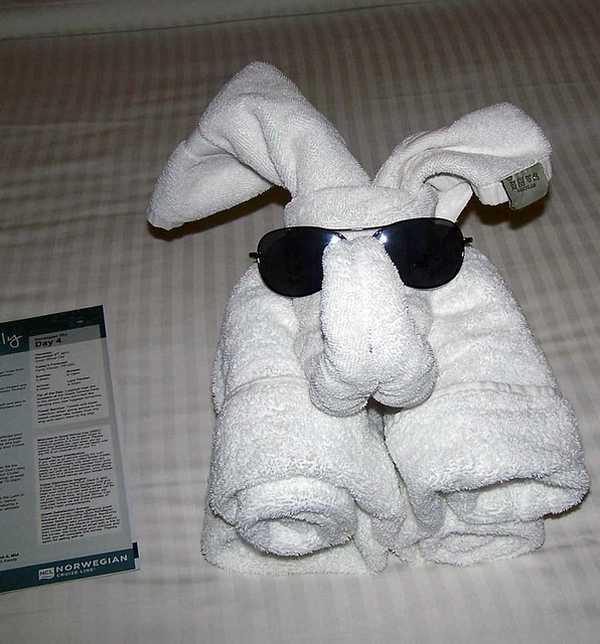 animaletti asciugamani 4