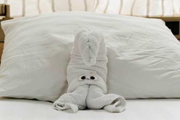 animaletti asciugamani 5