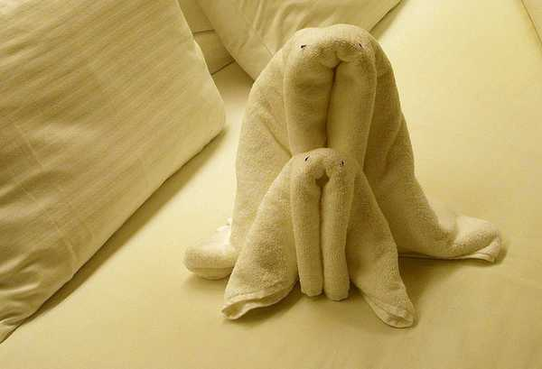 animaletti asciugamani 7