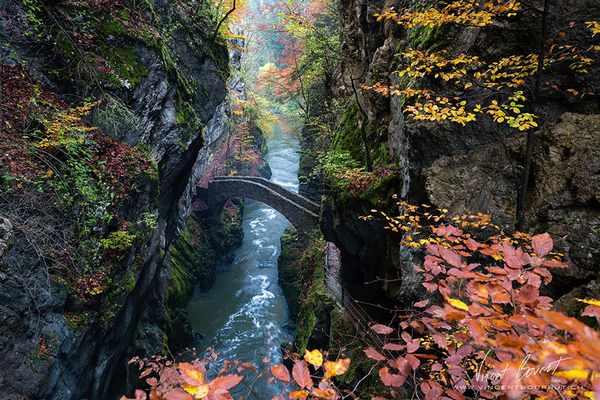 ponte 5 svizzera