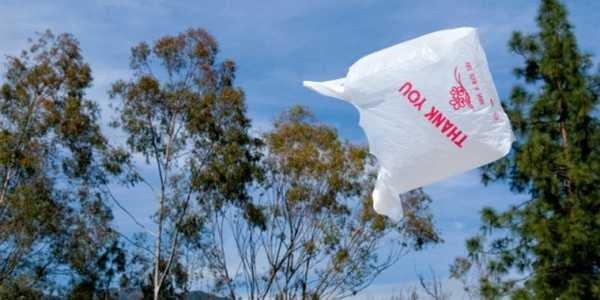 sacchetti di plastica hawaii