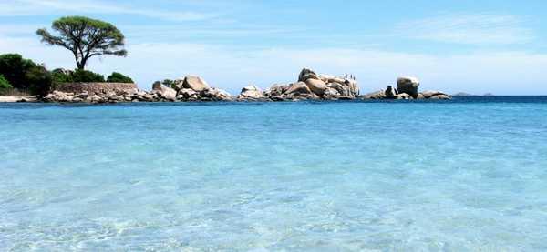 spiagge corsica 10