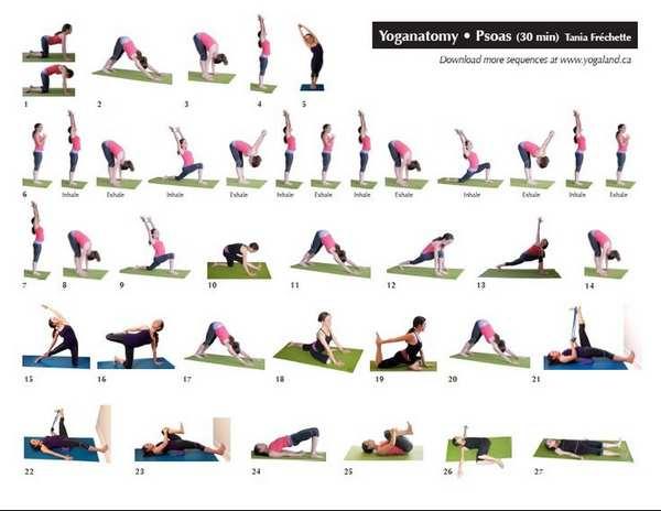 allenare muscolo psoas