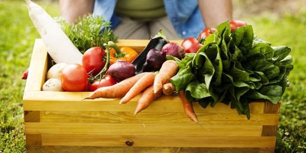 cibo locale e di stagione