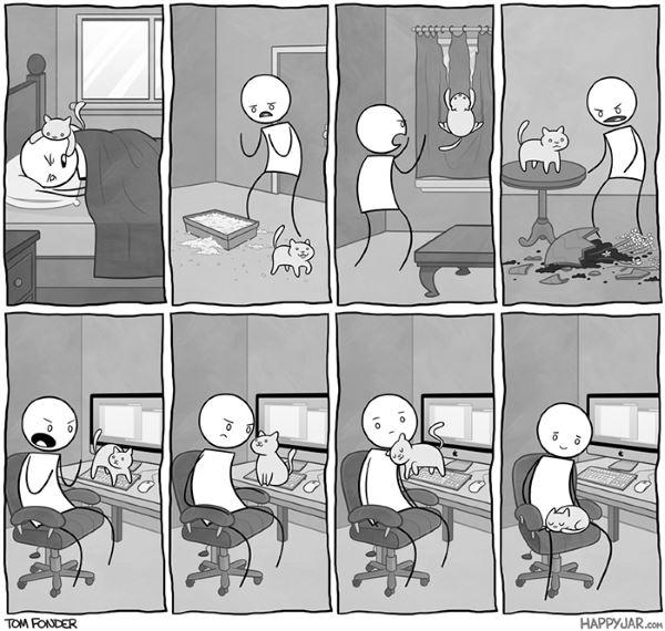 1. fumetti gatto