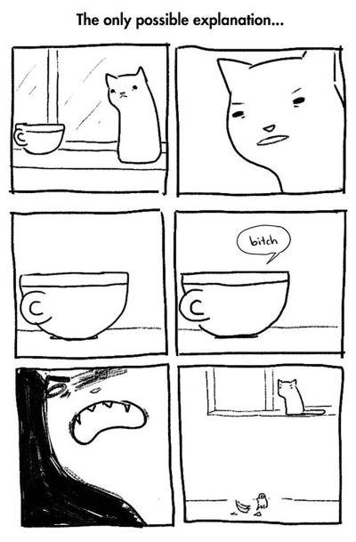 3. fumetti gatto
