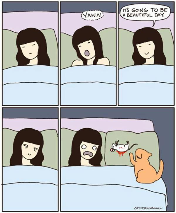 4. fumetti gatto